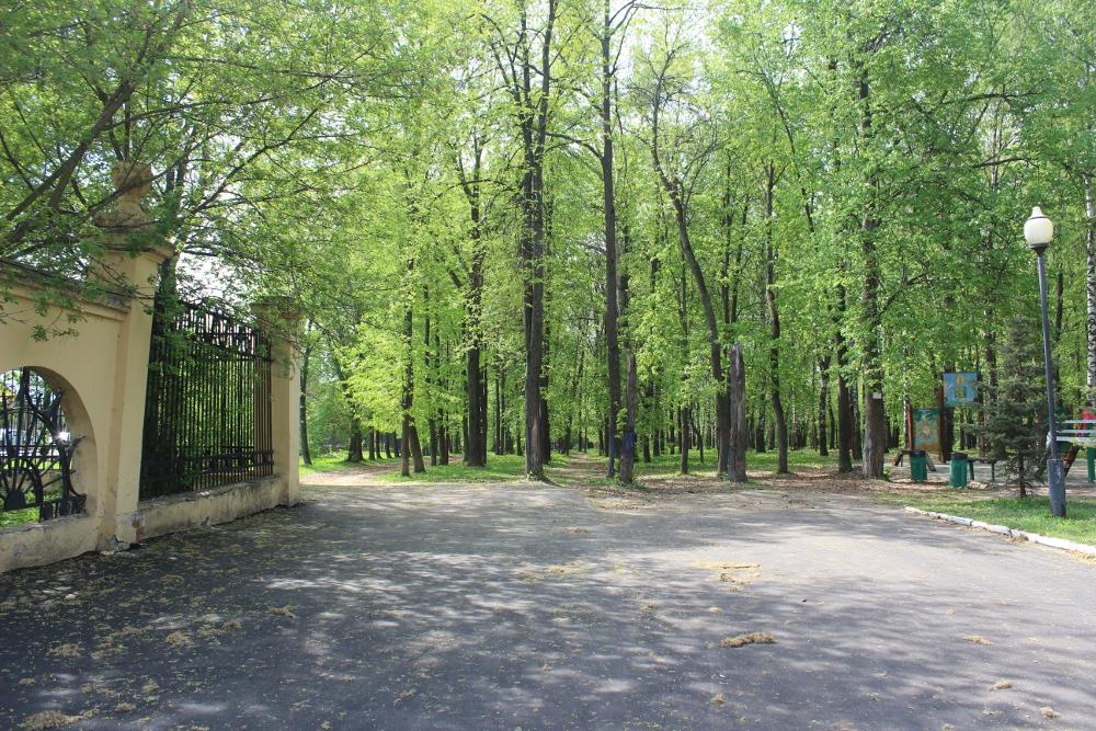 Госзакупка по благоустройству парка «Швейцария» приостановлена